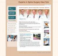 Experts in Spine Surgery New York