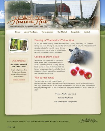 Expert Website Design Jacksonville FL