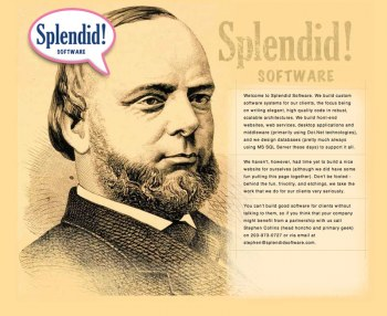 Splendid! Software Website Design