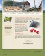 Expert Website Design Jacksonville FL
